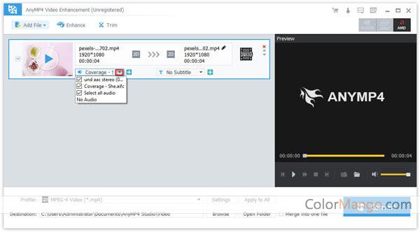 AnyMP4 Video Enhancement Screenshot