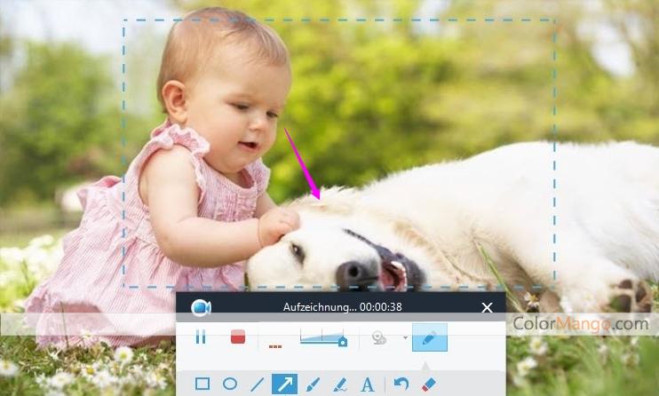 Apowersoft Bildschirm Recorder Pro Bildschirmfoto