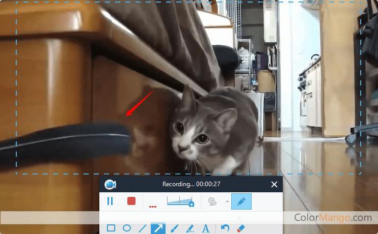 Apowersoft Enregistreur d'écran Pro Capture D'écran