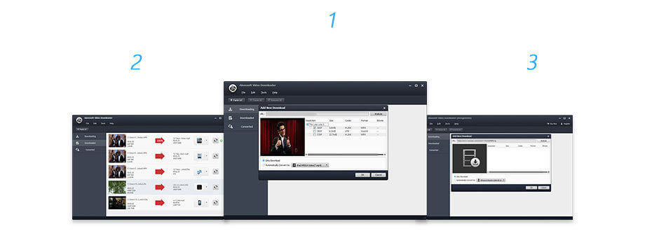 Aiseesoft Video Downloader Screenshot