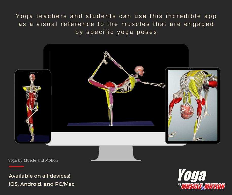 Muscle&Motion YOGA スクリーンショット