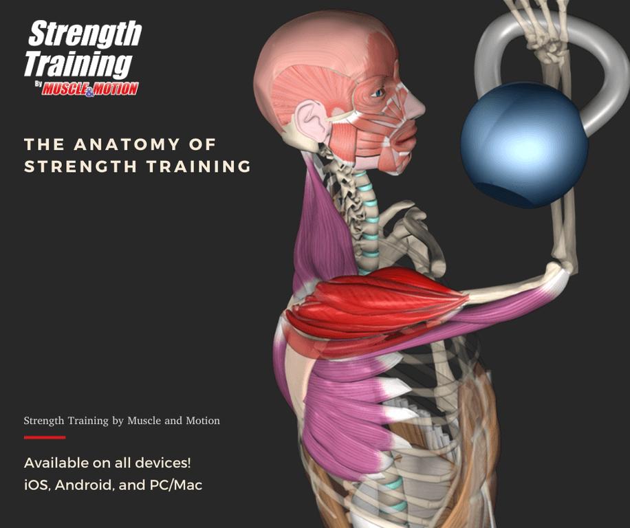 Muscle & Motion - Strength Training Screenshot