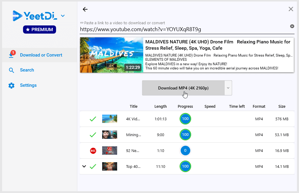 YeetDL Screenshot