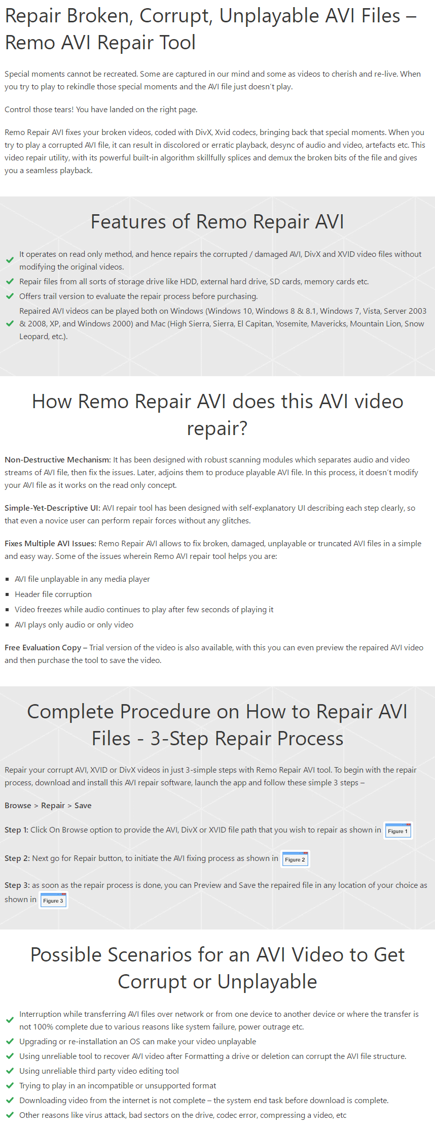 Remo Repair AVI Feature