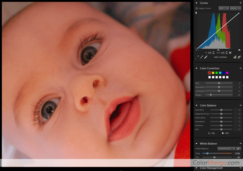 Corel AfterShot Pro Screenshot