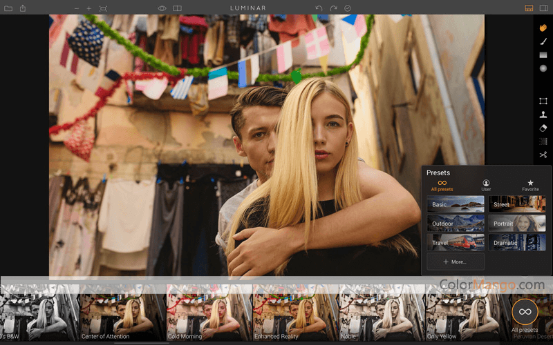 Luminar Screenshot