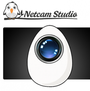 Netcam Studio Shopping & Trial