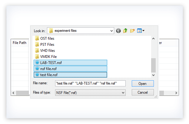 Kernel for Lotus Notes to Word Screenshot
