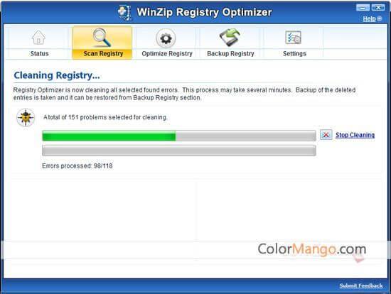 WinZip Registry Optimizer Screenshot