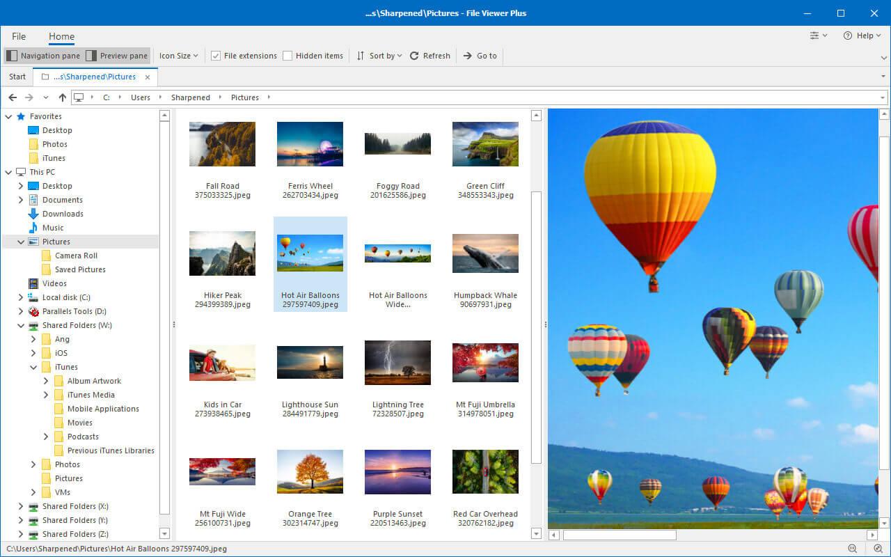 File Viewer Plus Screenshot