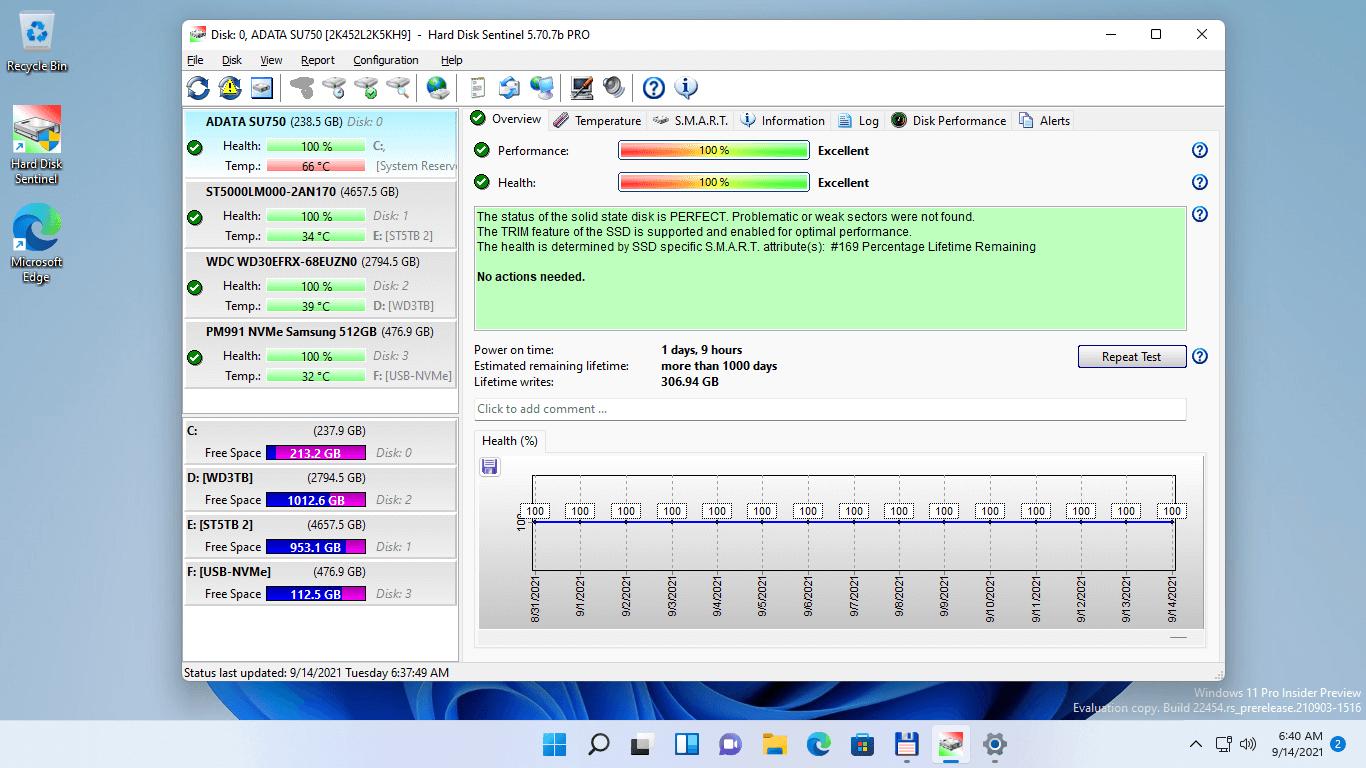 Hard Disk Sentinel Professional Screenshot